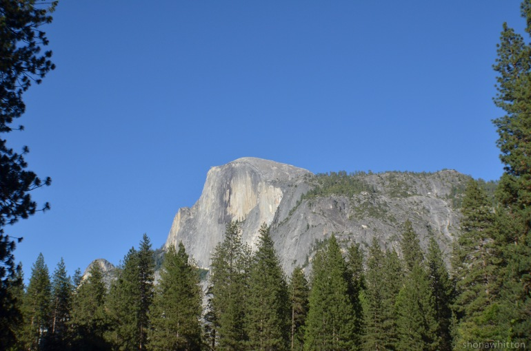 Half Dome. A really bid dome - even though it's only half a dome.